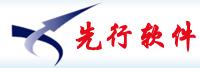 山东先行电子信息技术有限公司